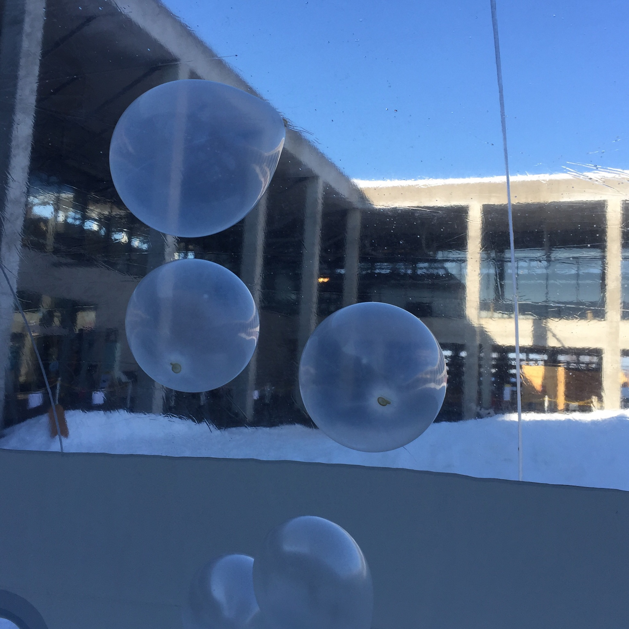 雪遊び博覧会 キナーレ
