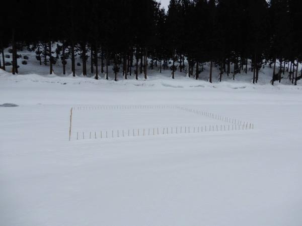 前山忠「雪の視界2017」