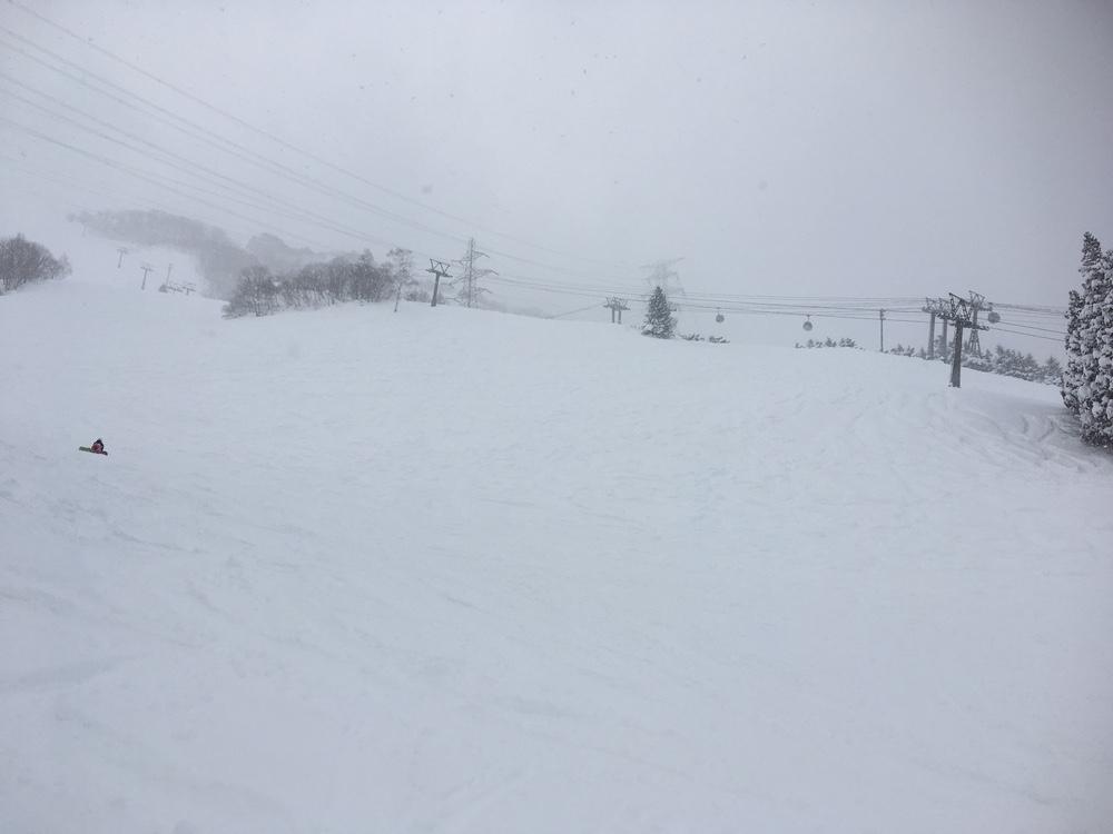 今日の苗場はパウダースノー!だけど吹雪いてた