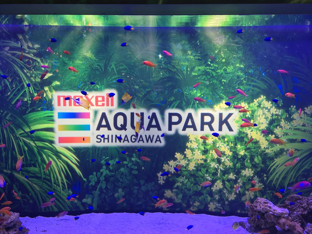 映像と組み合わせた水槽など、近未来的な水族館「マクセルアクアパーク品川」